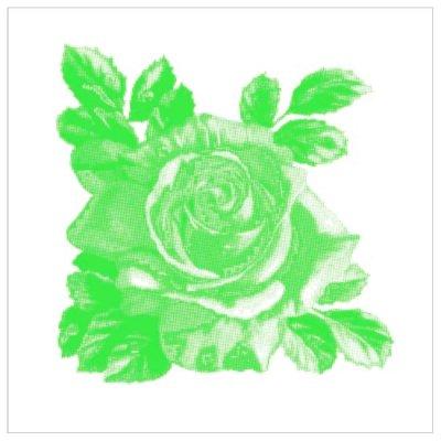Kakeldekor,  Rosa-Lee Green 6 st