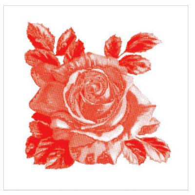 Kakeldekor,  Rosa-Lee Red 6 st