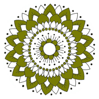 Kaakelitarra, Lotus Oliivi (6kpl)