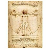 Vihko, Da Vinci