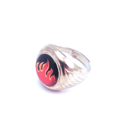 Ring W&D, Flame