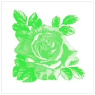 Kaakelitarra, Rosa-Lee Green 6 kpl